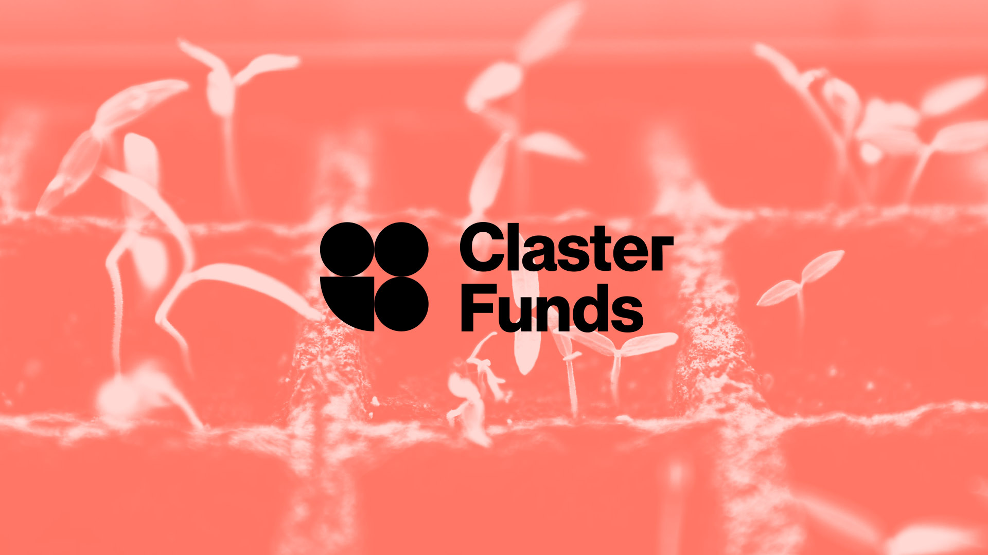 claster_funds